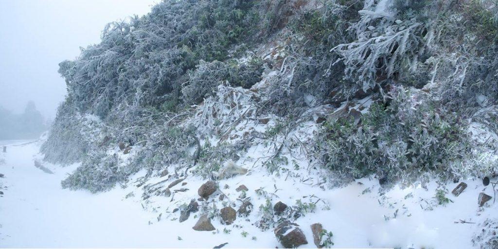 Đường xá cũng phủ đầy tuyết trắng làm cho nơi đây vô tình trở thành khung cảnh như ở Châu Âu vào mùa đông